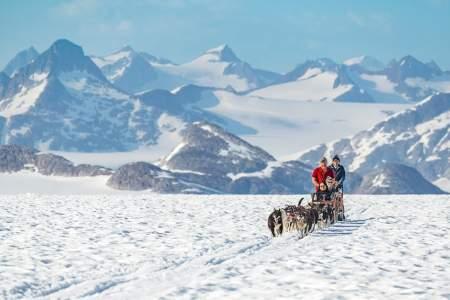 NorthStar Trekking Glacier Dog Sled Adventure