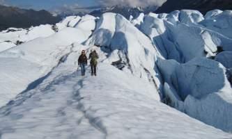 Glacier Hikes and Ice Climbing IMG 41942019