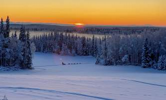 Leslie Paws for Adventure pics for Alaska Channel dogsled rides nice view of AK range