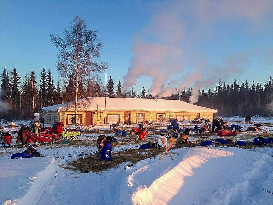 Leslie Paws for Adventure pics for Alaska Channel tolovana lodge during iditarod copy