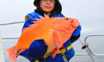 Profish n sea charters 7 Profish N Sea 2012