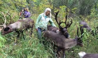 Jane with reindeers