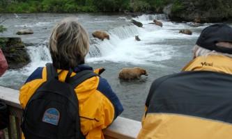 KAT 3733 alaska rusts bear viewing anchorage