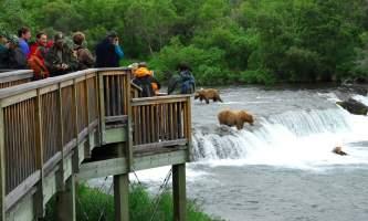 KAT 3530 alaska rusts bear viewing anchorage