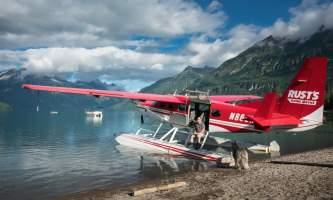 Jodyo photos 17 C0731 003 alaska rusts bear viewing anchorage