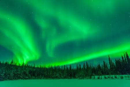 Salmon Berry Tours Northern Lights Excursions