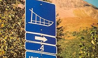 Seaveys ididarod Alaska Channel