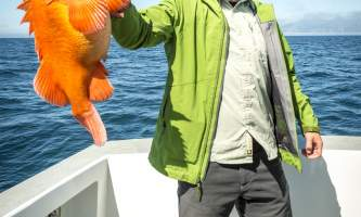 Seward Chamber 2018 fishing joel krahn 9106
