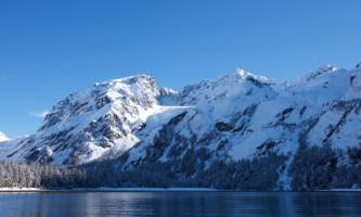 Seward ocean excursions 16