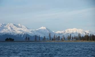 Seward ocean excursions 18