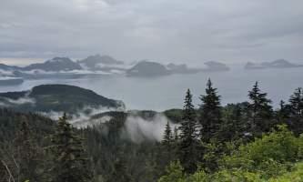 Trenton Gould IMG 20200801 110921 alaska seward wilderness collective