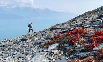 Seward wilderness collective 69419850 10219871470243138 4355263049083387904 n