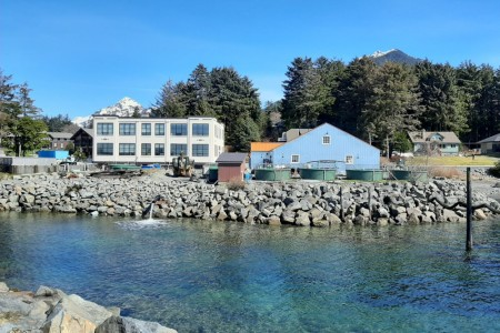 Sitka Sound Science Center