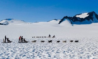 Snowhook adventure guides of alaska dog sledding tours PSX 20190706 101638