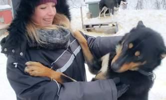 Snowhook adventure guides of alaska dog sledding tours PSX 20190123 044010