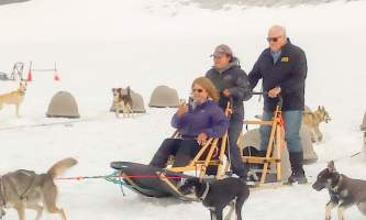 Snowhook adventure guides of alaska dog sledding tours PSX 20190720 182347