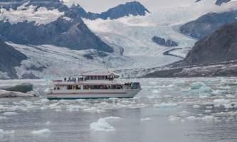 Colleen Stephens MG 6817 alaska valdez stan stephens glacier wildlife cruises