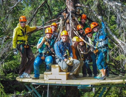 A group of people in ziplining gear pose on a deck in a tree.