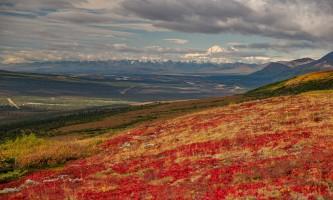 Alaska temsco denali flightseeing tours 2019 Heli Hike Copyright Ron Gile 2015 TEMSCO Helicopters Denali Flightseeing Tours