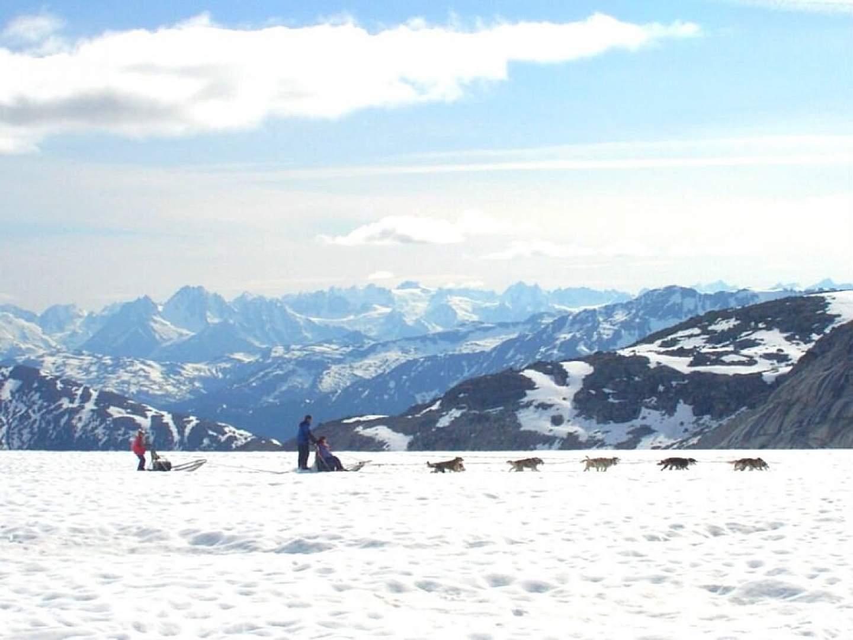 Dog Sledding with TEMSCO Helicopters