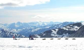 Alaska temsco mendenhall dog sledding Cover photo edited TEMSCO Mendenhall Dog Sledding