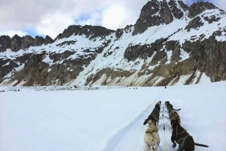 TEMSCO Mendenhall Dog Sledding
