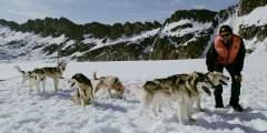 TEMSCO Skagway Dog Sledding and Glacier Flightseeing by Helicopter