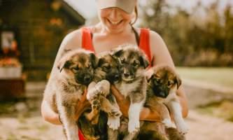 Summer Katrina w Puppies