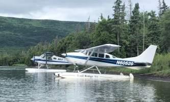Trail Ridge Air Bear Viewing IMG 73892019