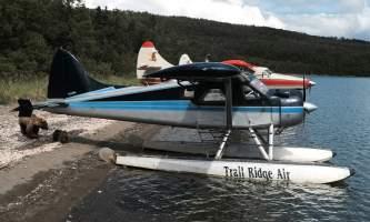 Trail Ridge Air Bear Viewing Katmai2015 W2019