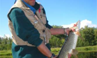 Trail ridge fly out fishing DQW Pics 0562019