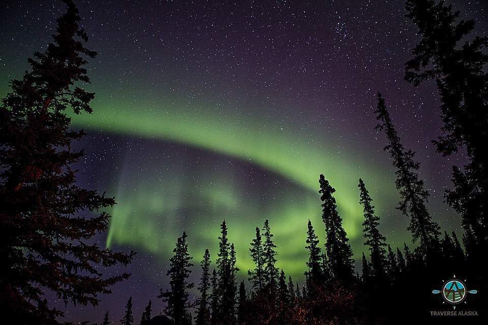 Vibrant green Northern Lights
