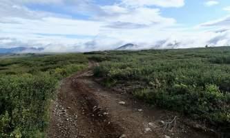MILE 37 Maclaren Summit Trail