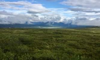 MILE 37 Misty view from Maclaren Summit
