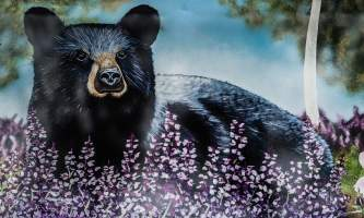 Blue Bear 7290620 alaska untitled