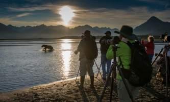Alaska bear camp alaska bearcamp photographers bear great alaska bear camp
