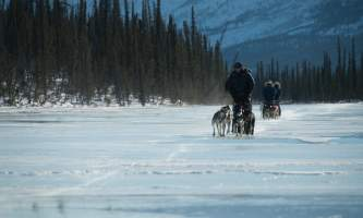 Iniakuk winter 4 alaska untitled