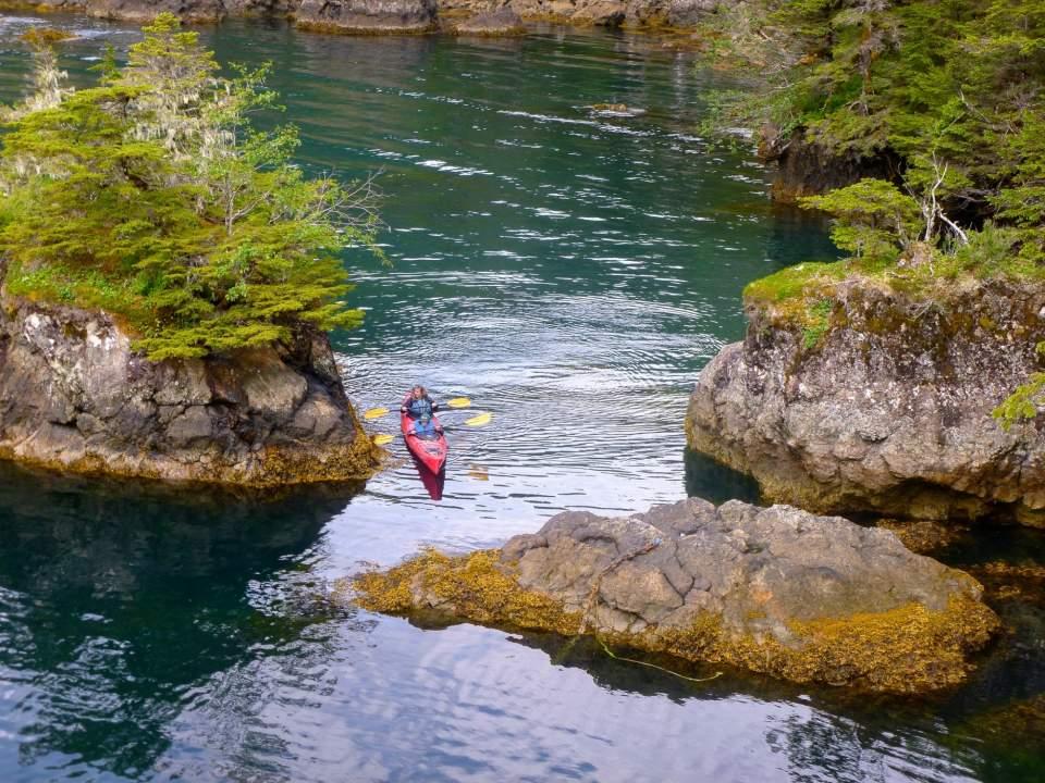 Two people kayaking in a lush Alaskan surrounding.