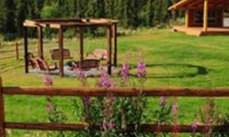 Alaska Firepit and fireweed 2020