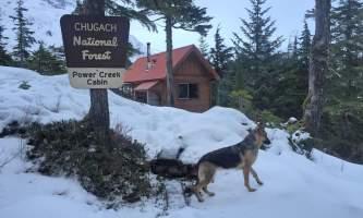 Jake Borst CDV Power Creek Cabin