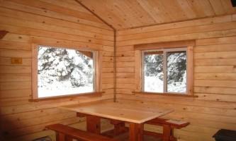 Alaska marten2 marten cabin