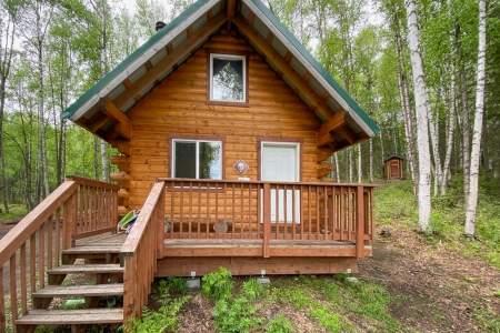 Nancy Lake Cabin #2