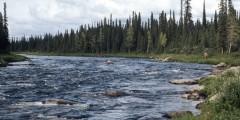 Gulkana River