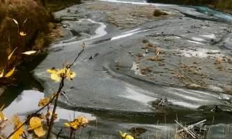 Crow Pass Haley Johnston IMG 1450
