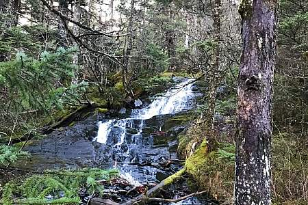 Emerald Cove Trail