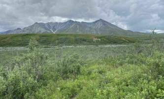 Alaska gorge creek trail gorge creek nicholas buzzell Nicholas Buzzell parks trails