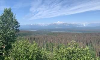 Kesugi Ridge Trail Haley Johnston IMG 1077