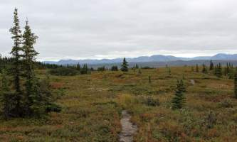Alaska mckinley bar trail alaska 812 mckliney bar river trail brandon hayes Brandon Hayes mckinley bar trail
