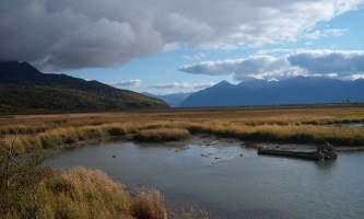 Alaska potters marsh 100 2798 Zen Godfrey Anchorage Coastal Wildlife Refuge