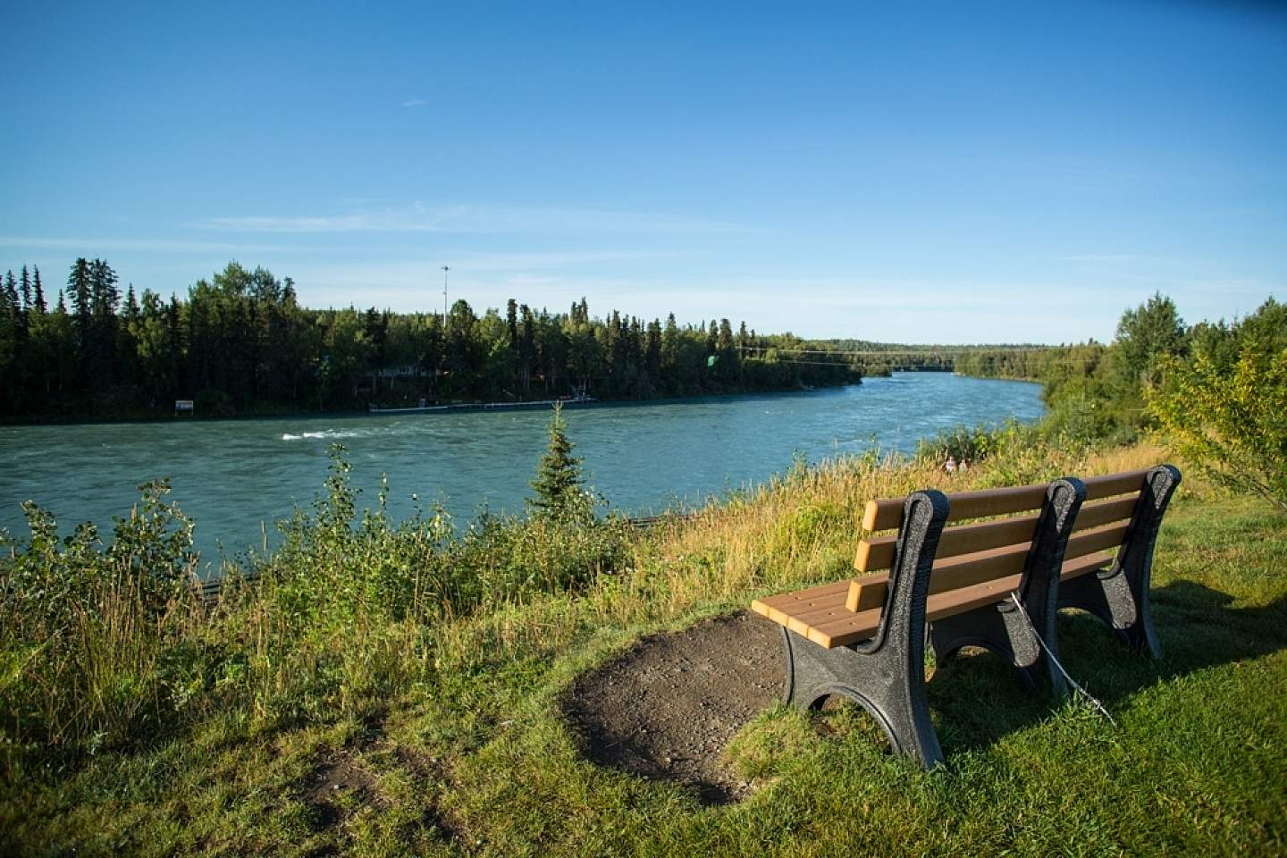 Soldotna Creek Park is an excellent place to relax and explore.